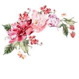 Bukett av pionblommor, bär, vinbär och hallon vattenfärg Royaltyfria Bilder