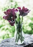 Bukett av purpurfärgade frottétulpan i en enkel flaska - stillebenskönhetnatur Hem- dekor royaltyfri fotografi