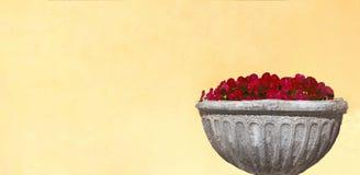 Bukett av röda blommor i en stenvas på en gul vägg fotografering för bildbyråer