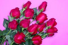 Bukett av röda ro Royaltyfri Fotografi