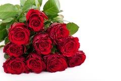 Bukett av röda rosor Royaltyfria Bilder