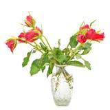 Bukett av röda rosor i en tillbringare Royaltyfria Foton