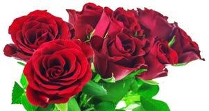 Bukett av röda rosor på vit bakgrund med den snabba banan Royaltyfri Foto