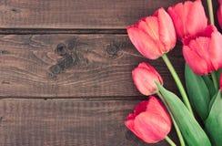 Bukett av röda tulpan på en träbakgrund just rained Royaltyfri Bild
