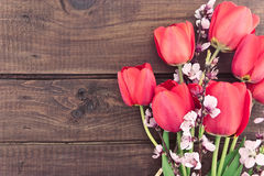 Bukett av röda tulpan på en träbakgrund med utrymme för text Royaltyfri Foto