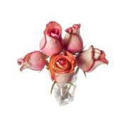 Bukett av ro i en glass vase Royaltyfria Bilder
