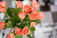 Bukett av rosa ro Royaltyfri Fotografi