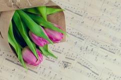 Bukett av rosa tulpan med musikaliska anmärkningar Royaltyfri Fotografi