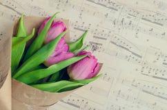 Bukett av rosa tulpan med musikaliska anmärkningar Arkivfoto