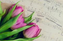 Bukett av rosa tulpan med musikaliska anmärkningar Arkivbild