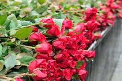 Bukett av rosor Arkivbild