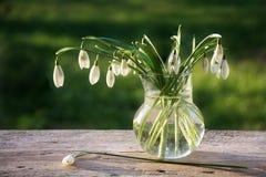 Bukett av snödroppar i en glass vas på lantligt trä Arkivbilder
