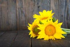 Bukett av solrosor Arkivfoto