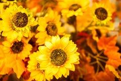 Bukett av solrosor Royaltyfri Bild