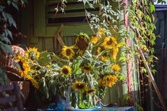 Bukett av solrosor nära kojan royaltyfri bild