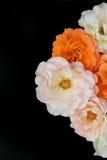 Bukett av svart bakgrund för rosor, lekmanna- lägenhet Royaltyfri Fotografi