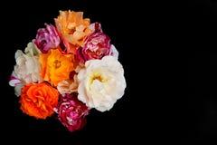 Bukett av svart bakgrund för rosor, lekmanna- lägenhet Royaltyfri Bild