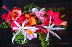 Bukett av tropiska blom royaltyfria foton