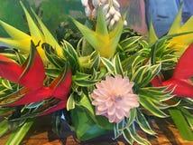 Bukett av tropiska hawaianska blommor Royaltyfri Bild