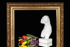 Bukett av tulpan och en byst av Venus i en ram för målningar royaltyfria bilder