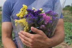 Bukett av violet-, guling-, rosa färg- och vitstatis i händerna för man` s arkivbilder