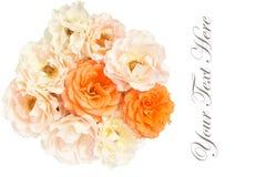 Bukett av vit bakgrund för rosor, lekmanna- lägenhet Royaltyfri Fotografi