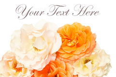 Bukett av vit bakgrund för rosor, lekmanna- lägenhet Arkivbilder