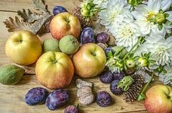 Bukett av vita dahlior med äpplen, gröna muttrar, katrinplommoner och fikonträd Royaltyfri Fotografi