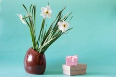 Bukett av vita påskliljor i en keramisk vas Romantiska gåvor Sp Arkivfoto