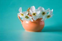 Bukett av vita påskliljor i orange vas white för blommaskogfjäder Narci Arkivfoto