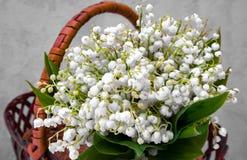 Bukett av vita små blommor i korgen Fotografering för Bildbyråer