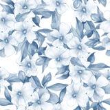 Bukett av vitblommor Blom- bakgrund för vattenfärg Sömlös modell 12 Royaltyfria Foton