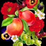 Bukett bakgrunder, natur, blomma, skönhet, växt royaltyfri illustrationer