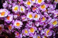 Bukett för konstgjord blomma Fotografering för Bildbyråer