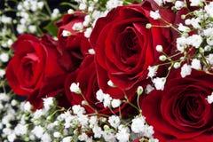 Bukett för röda rosor Arkivbilder