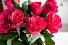 Bukett för röda rosor med ett rosa handlag Inomhus med vit bakgrund arkivfoton