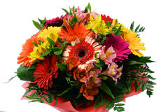 Bukett från mång--färgade blommor Royaltyfri Fotografi