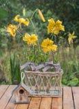 bukett isolerad vit yellow för liljar Royaltyfria Bilder