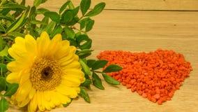 Bukett med gula blommor royaltyfria foton