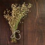 bukett torkade blommor Arkivfoto