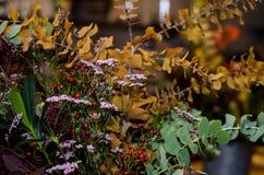 bukett torkade blommor Royaltyfri Bild