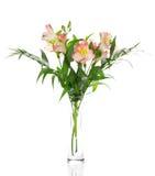 Buketten av alstroemeria blommar i den glass vasen fotografering för bildbyråer