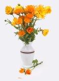 Buketten av calendulaen blommar i en vit vase Royaltyfri Foto