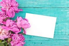 Buketten av den rosa pionen blommar på lantlig träbackgro för turkos Fotografering för Bildbyråer