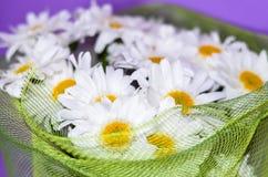 Buketten av den vita tusenskönan blommar på en orange bakgrund arkivfoto