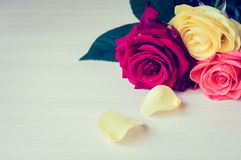 Buketten av färgrika rosor stänger sig upp Royaltyfri Bild