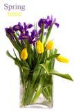 Buketten av fjädrar blommor - tulpan och irises Arkivbild