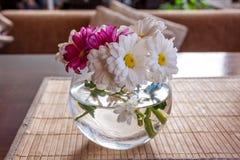 Buketten av kamomill blommar i den glass vasen Arkivbild