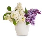 Buketten av lilan blommar i blomkruka Royaltyfri Bild