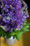 Buketten av lupine blommar i en vas Royaltyfri Bild